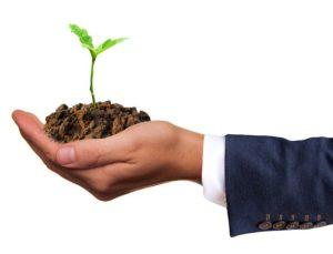 Klimaschutz im Unternehmen